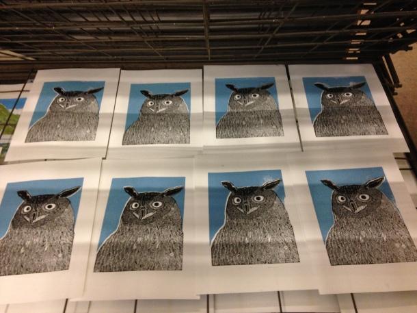 PaulJ-owls